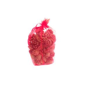 Bag of Cones