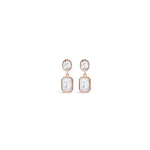 Rose Gold Earrings E2078RS